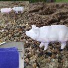 Hartland Mystery Pig with bag