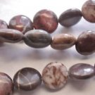 ~   CONGLOMERATE JASPER 10mm FLAT  ROUND  SEMI PRECIOUS  BEADS ~ sp657
