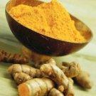 Pure 100%  100 g Curcumin powder,Turmeric extract root, Curcuma longa powder