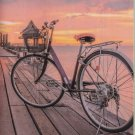 2016-2017 Two Year Monthly Pocket Planner - Bicycles