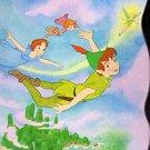 Disney Peter Panthe - Magic of Never Land - Board Book