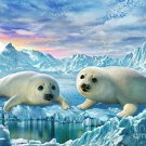 ADRIAN CHESTERMAN SEAL PUPS 100 PIECE PUZZLE
