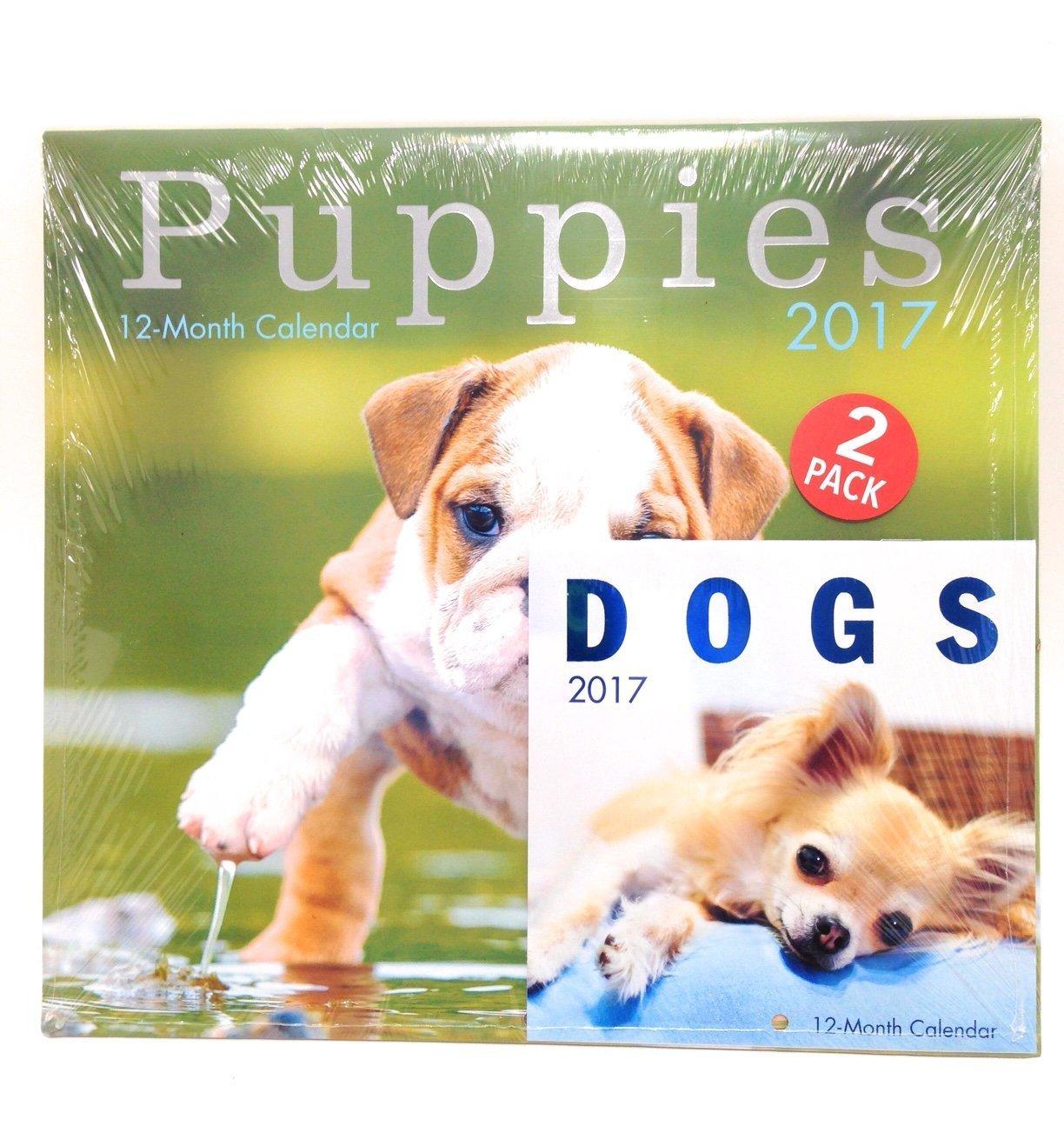 "2017 12"" x 12"" Calendar Puppies With Dogs Mini Calendar"