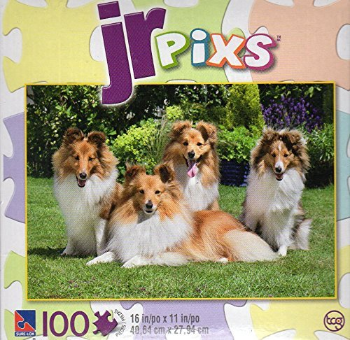 JR pixs - Shetland Family - 100 Piece Jigsaw Puzzle