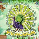 Peacock - 3D Puzzle - Assembly Model Puzzle Kit