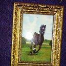 Kappa Black Beauty (Treasury of Illustrated Classics)