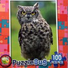 Hoot Hoot by LPF Puzzlebug 100 Piece Puzzle