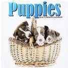 Puppies 2018 12 Month Calendar