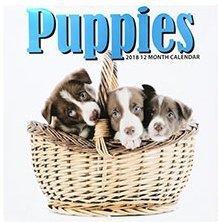 Puppies 2018 12 Month Calendar