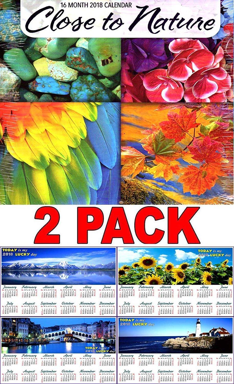 Close to Nature - 16 Month 2018 Wall Calendar Scheduler Organizer + Bonus 2018 Magnetic Calendar