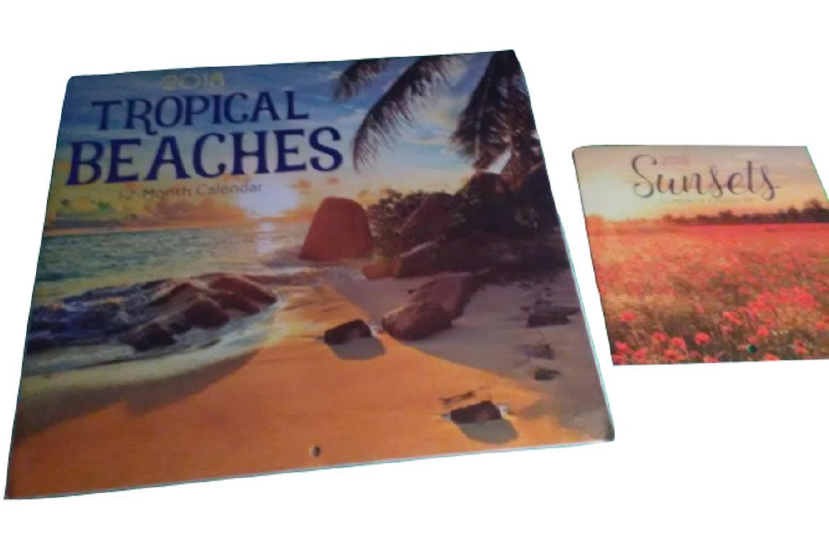 2018 Illustrated Wall Calendars with Matching Mini Calendars, (Tropical Beaches)