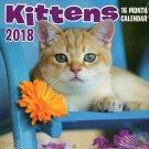 Kittens - 16 Month 2018 Wall Calendar Planner Organizer