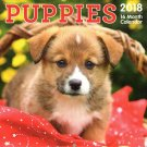 Puppies - 16 Month 2018 Wall Calendar Planner Organizer