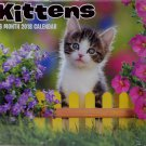 2018 Kittens Color Monthly Wall Calendar, 12 x 22 Inches