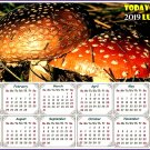 2019 Magnetic Calendar - Calendar Magnets - Today is my Lucky Day -  v01