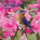 16 Month Wall Calendar 2019 Songbirds. Each Month Displays Full-Color Photograph.