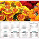 2020 Magnetic Calendar - Calendar Magnets - Today is my Lucky Day -Edition #13