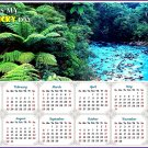 2020 Magnetic Calendar - Calendar Magnets - Today is my Lucky Day (Waipoua Kauri Reserve)