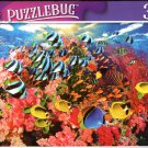 Colourful Fish Swimming Around Pink Colar - 300 Pieces Jigsaw Puzzle (p 012)