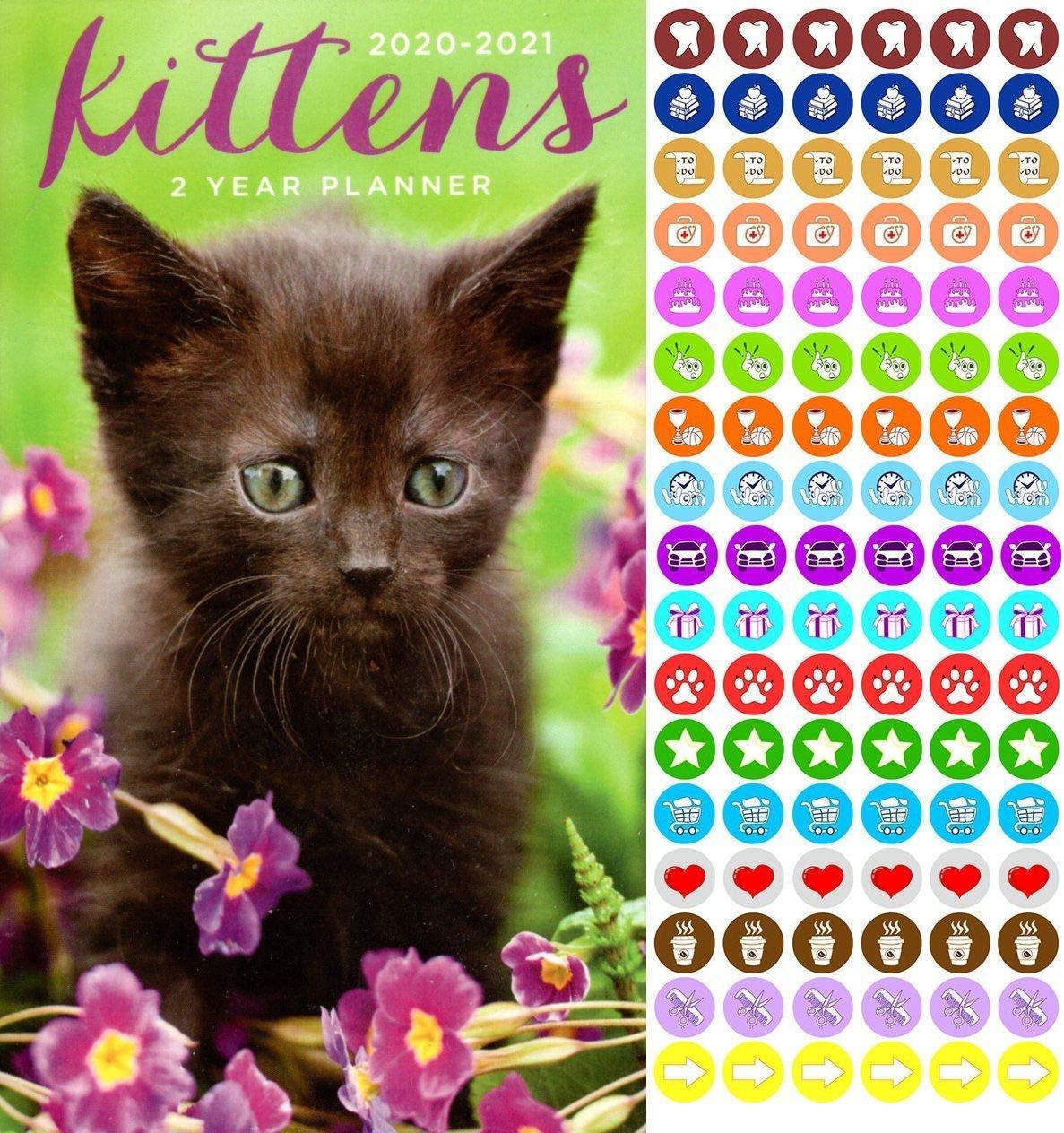 Kittens 2020-2021 2 Year Pocket Planner/Calendar/Organizer