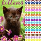 Kittens 2020-2021 2 Year Pocket Planner/Calendar/Organizer
