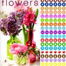 Flowers - 2020-2021 2 Year Pocket Planner/Calendar/Organizer