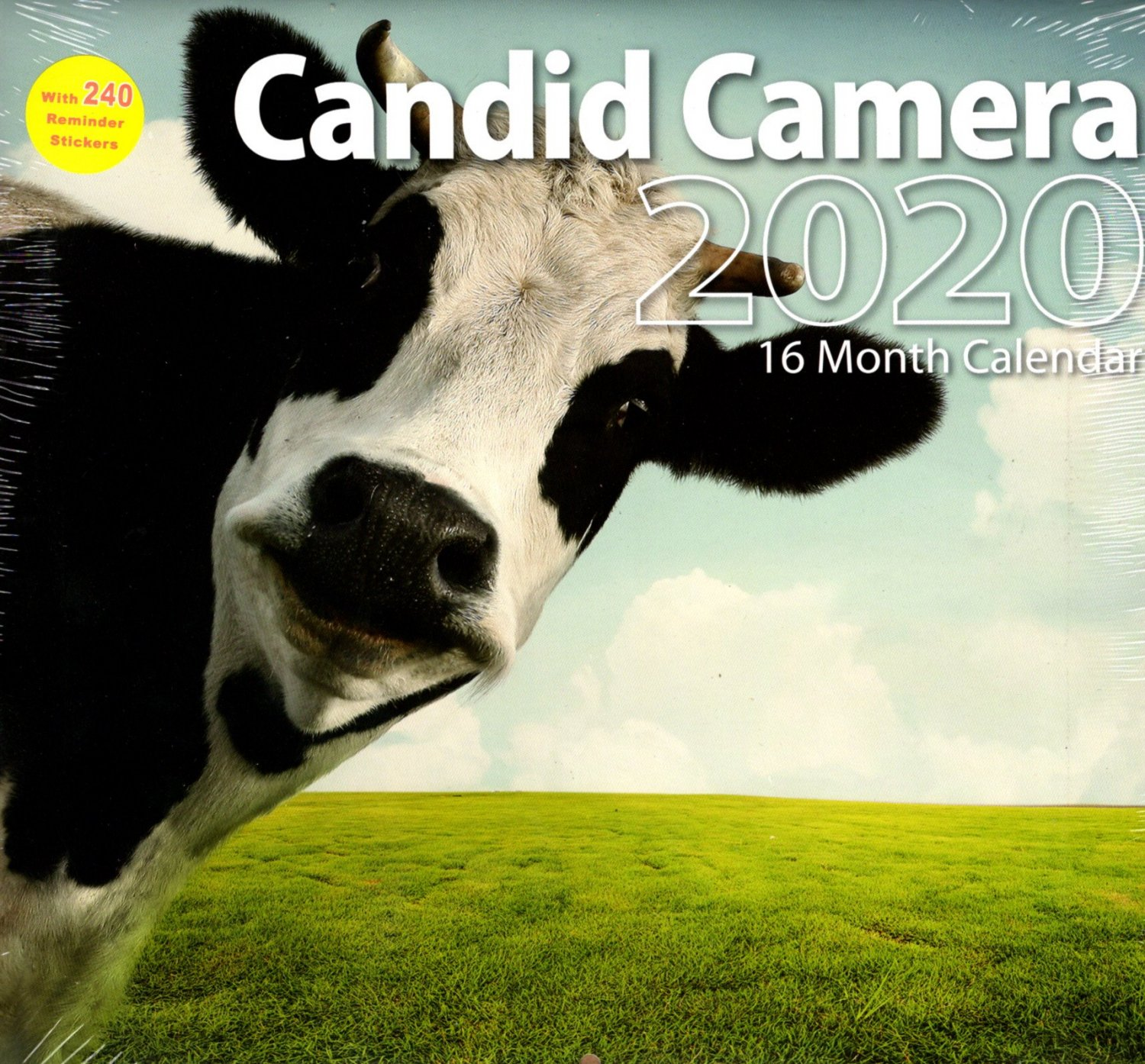 2020 Candid Camera Full Size 16 Month Wall Calendar