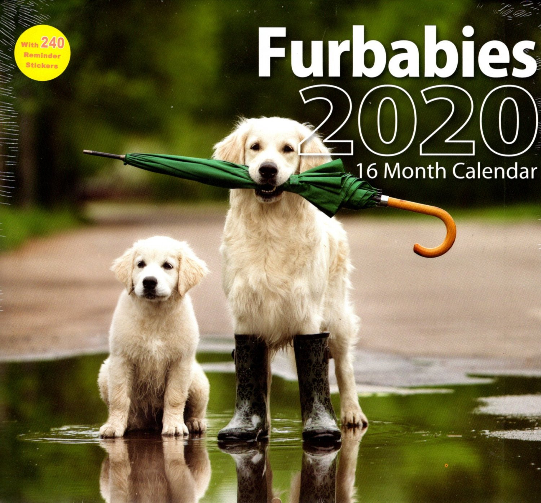 2020 Furbabies Full Size 16 Month Wall Calendar