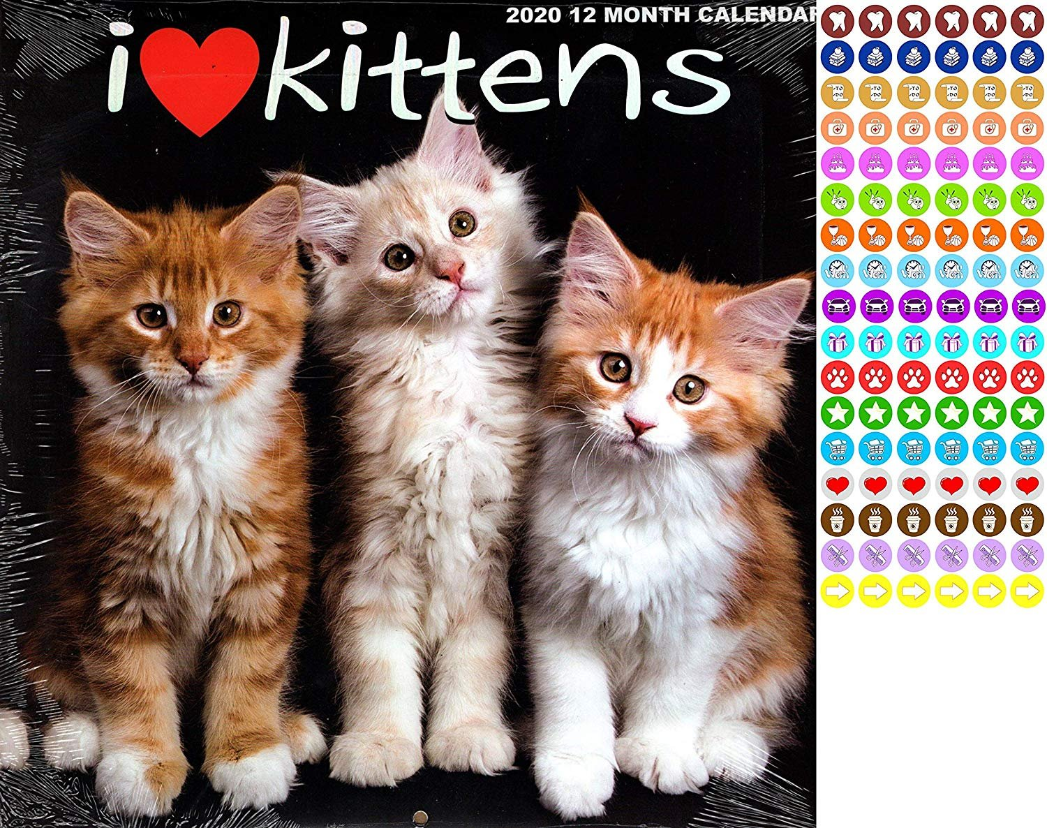 I Love Kittens - 12 Month 2020 Wall Calendar - with 100 Reminder Stickers