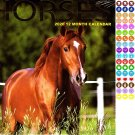Horses - 12 Month 2020 Wall Calendar - with 100 Reminder Stickers