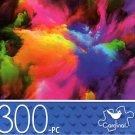 Color Explosion 1 - 300 Piece Jigsaw Puzzle - p014