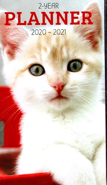 Kittens 2020-2021 2 Year Pocket Planner/Calendar