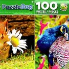 Beautifyl Peacock and Cute Baby Chipmunk - 100 Pieces Jigsaw Puzzle (Set of 2)