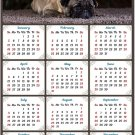 2020 Magnetic Calendar - Calendar Magnets - Today is My Lucky Day - Dog Themed 2