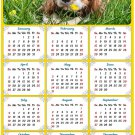 2020 Magnetic Calendar - Calendar Magnets - Today is My Lucky Day - Dog Themed 6