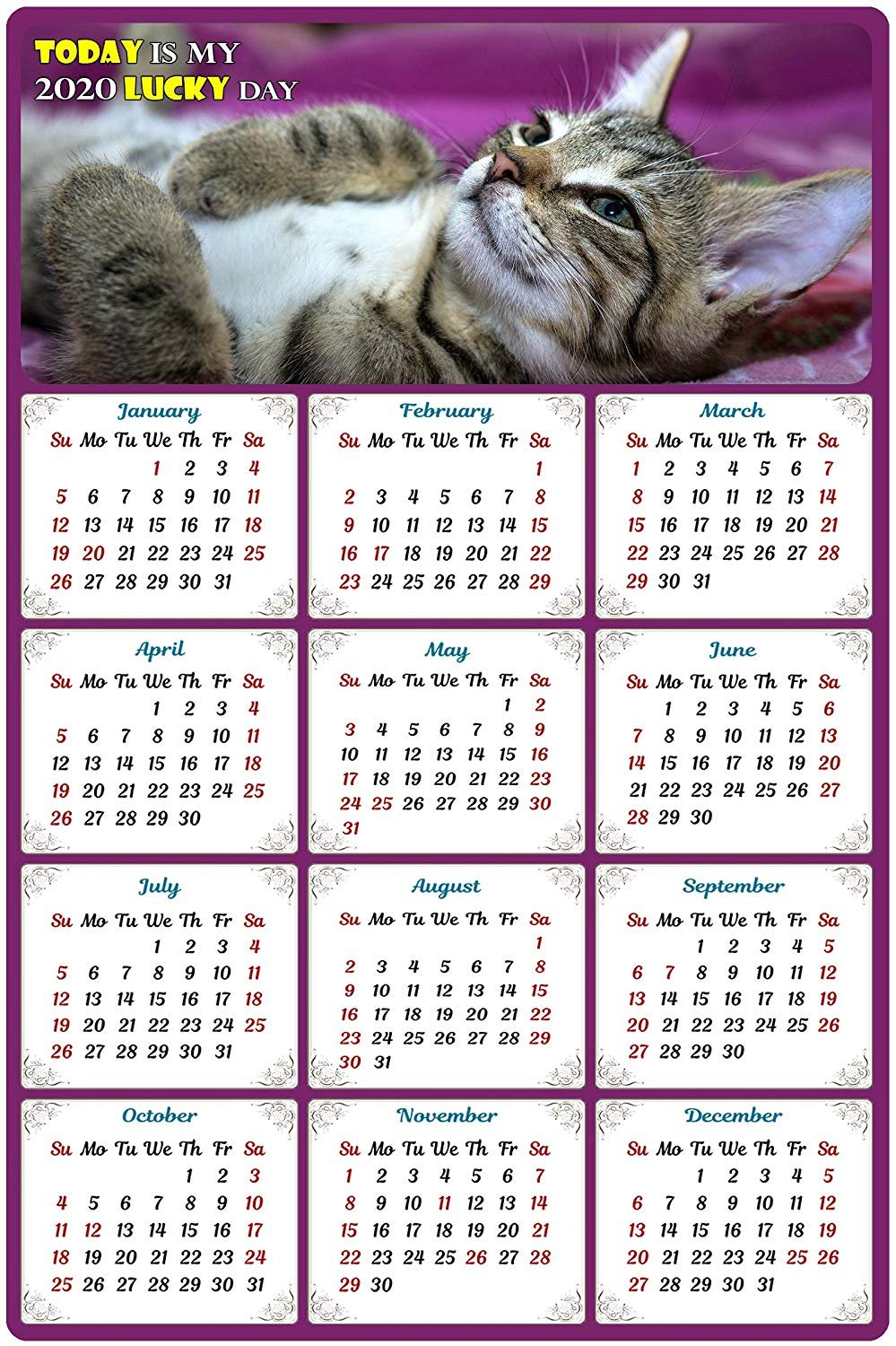2020 Magnetic Calendar - Calendar Magnets - Today is My Lucky Day - Cat Themed 8