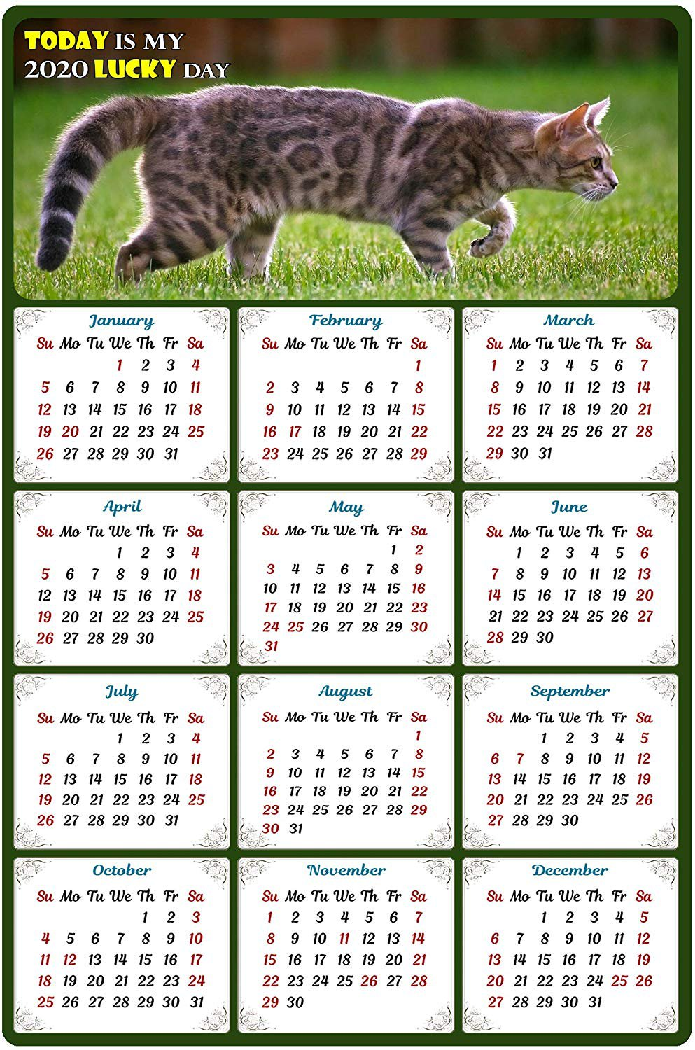 2020 Magnetic Calendar - Calendar Magnets - Today is My Lucky Day - Cat Themed 9