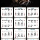 2020 Magnetic Calendar - Calendar Magnets - Today is My Lucky Day - Cat Themed 10