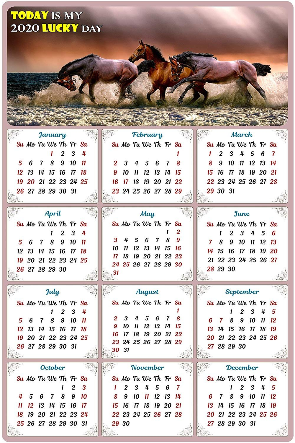 2020 Magnetic Calendar - Calendar Magnets - Today is My Lucky Day - Horses Edition #001