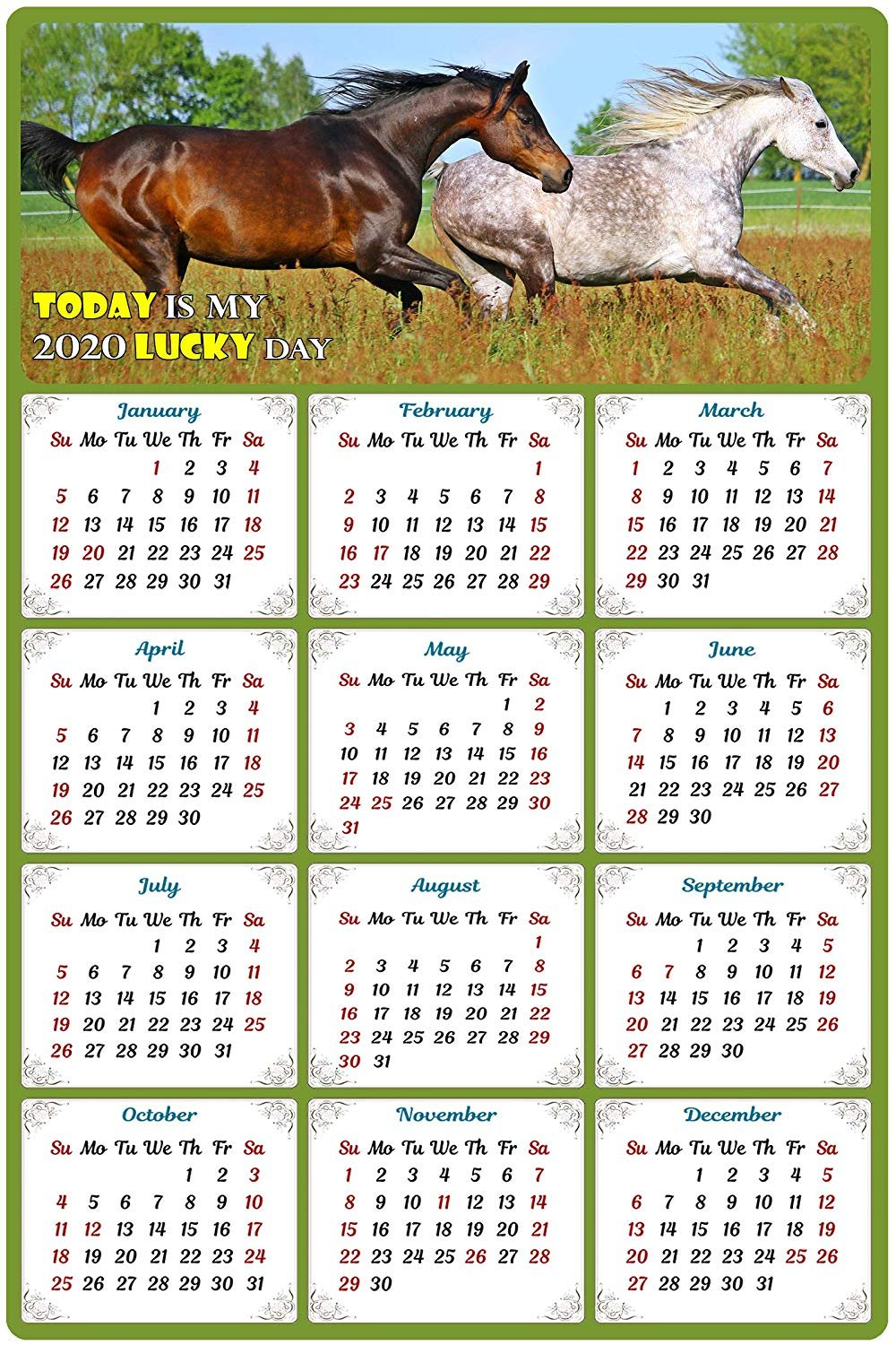2020 Magnetic Calendar - Calendar Magnets - Today is My Lucky Day - Horses Edition #003