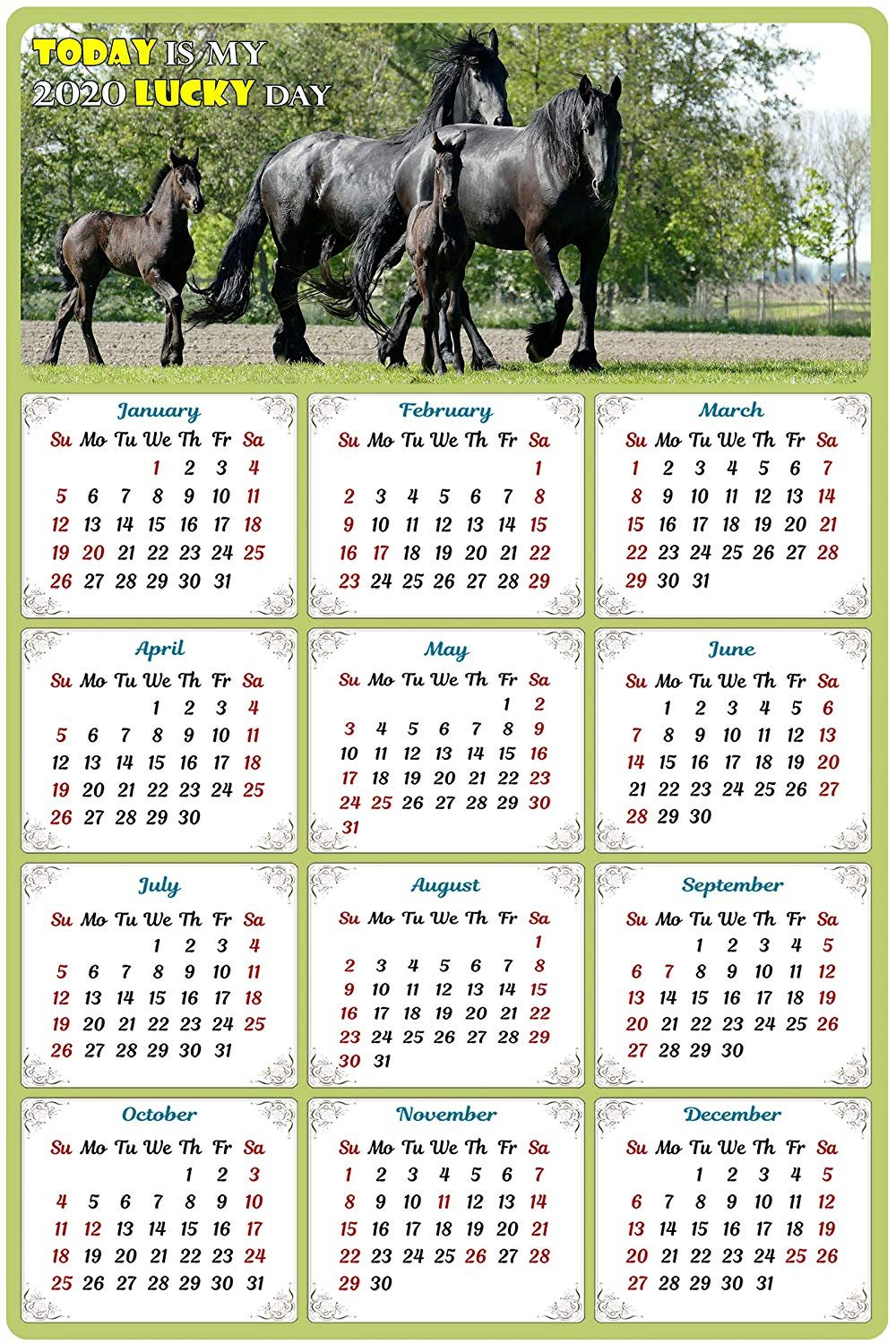 2020 Magnetic Calendar - Calendar Magnets - Today is My Lucky Day - Horses Edition #005