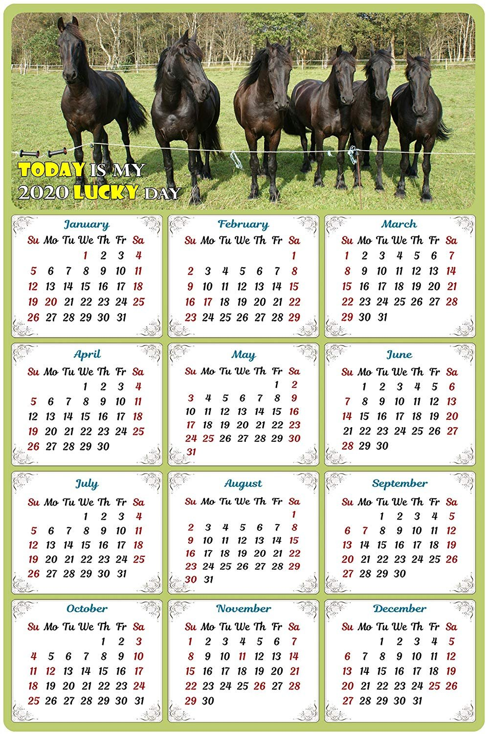 2020 Magnetic Calendar - Calendar Magnets - Today is My Lucky Day - Horses Edition #006