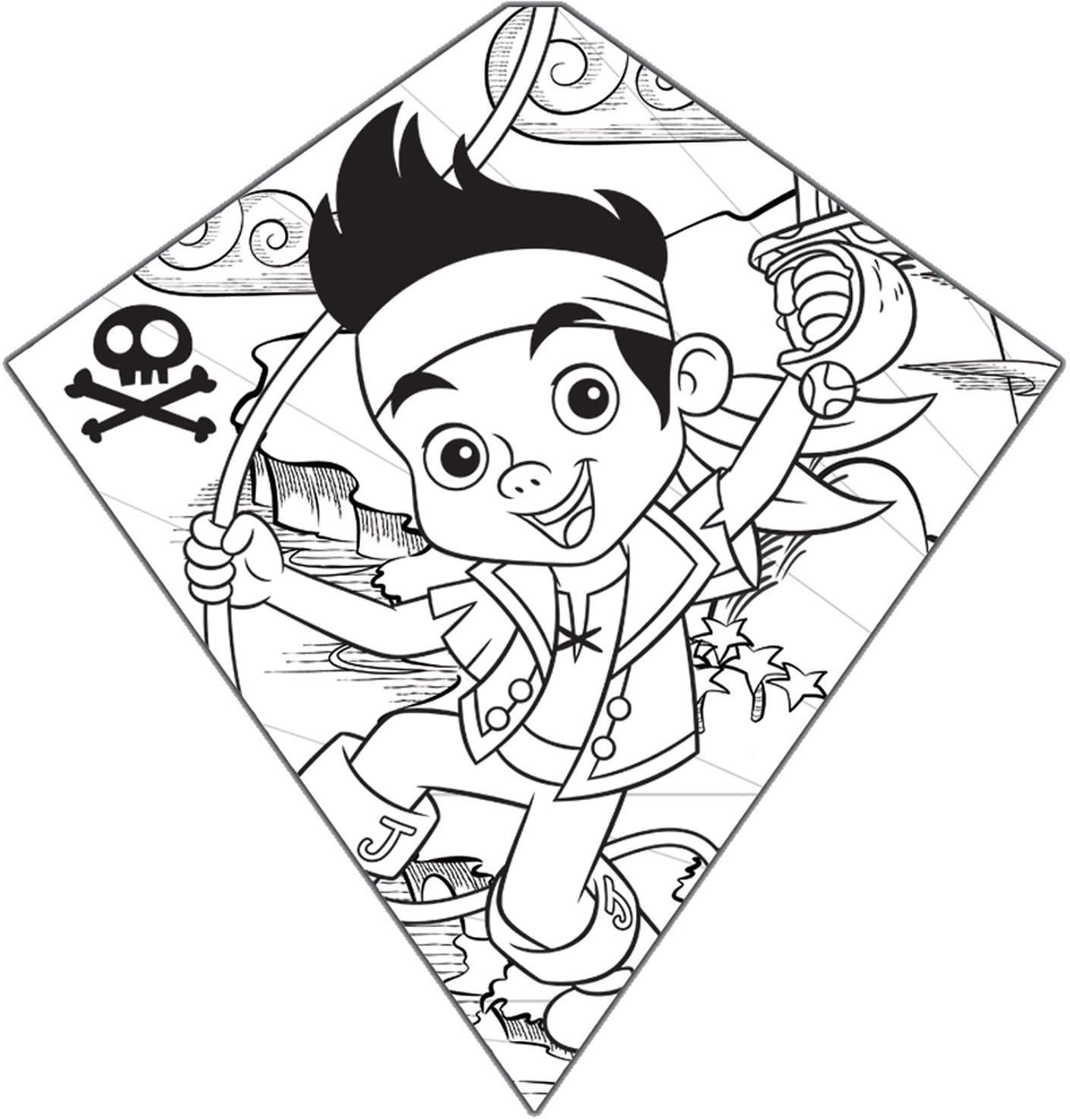 Color-Me-Kite Tyvek Diamond Kite: Jake