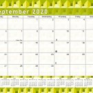 2020-2021 Monthly Magnetic/Desk Calendar - 16 Months Desktop - (Edition #25-03)