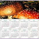 2021 Magnetic Calendar - Calendar Magnets - Today is My Lucky Day - Edition #38