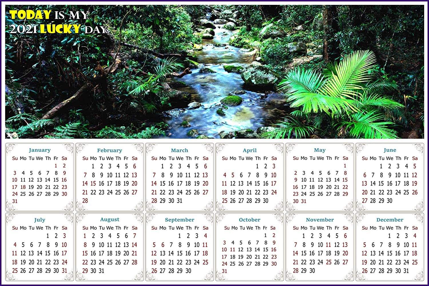 2021 Magnetic Calendar - Today is My Lucky Day - (Daintree National Park)