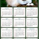 2021 Magnetic Calendar - Calendar Magnets - Today is My Lucky Day - Cat Themed 02 (5.25 x 8)