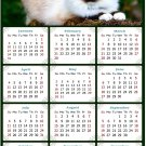 2021 Magnetic Calendar - Calendar Magnets - Today is My Lucky Day - Cat Themed 02 (8 x10)