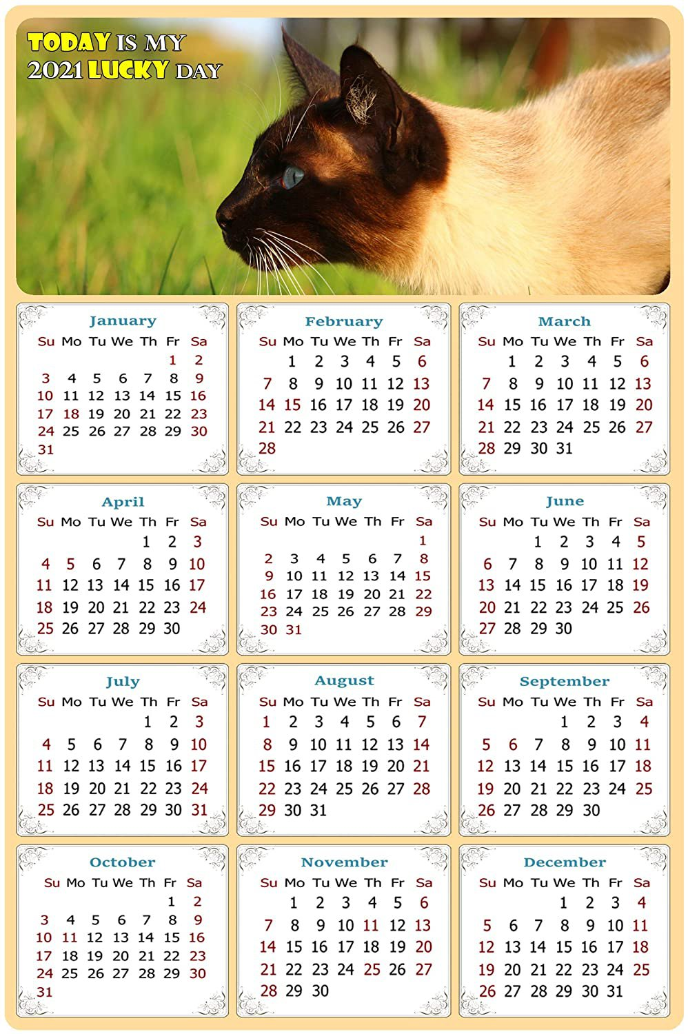 2021 Magnetic Calendar - Calendar Magnets - Today is My Lucky Day - Cat Themed 03 (5.25 x 8)