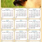 2021 Magnetic Calendar - Calendar Magnets - Today is My Lucky Day - Cat Themed 03 (7 x 10.5)